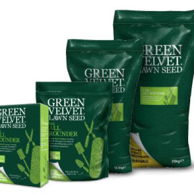Grass Seed Green Velvet