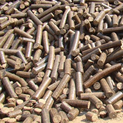 Bio Briquettes