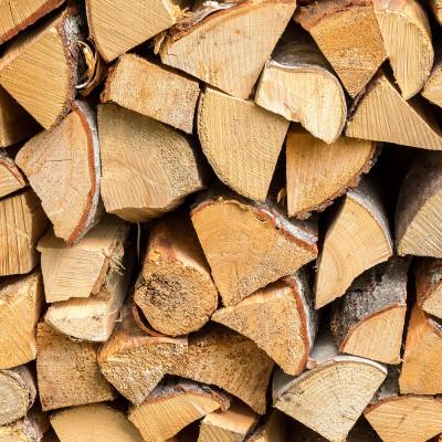 Kiln Dried Birch