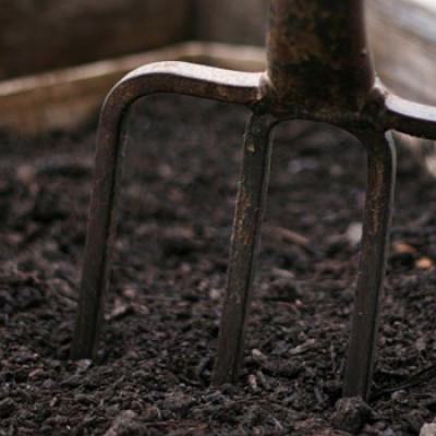 Organic Soil Enricher
